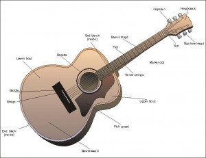 parts of the guitar